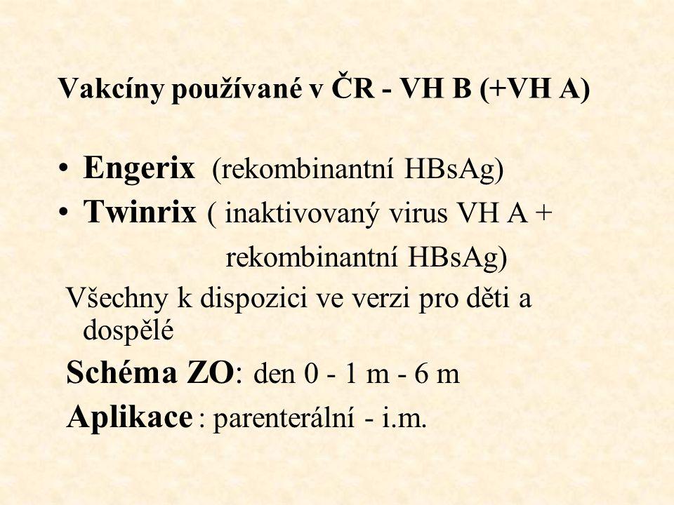 Vakcíny používané v ČR - VH B (+VH A) Engerix (rekombinantní HBsAg) Twinrix ( inaktivovaný virus VH A + rekombinantní HBsAg) Všechny k dispozici ve verzi pro děti a dospělé Schéma ZO: den 0 - 1 m - 6 m Aplikace : parenterální - i.m.