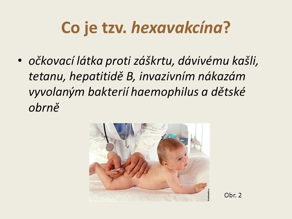 Co je tzv.hexavakcína.