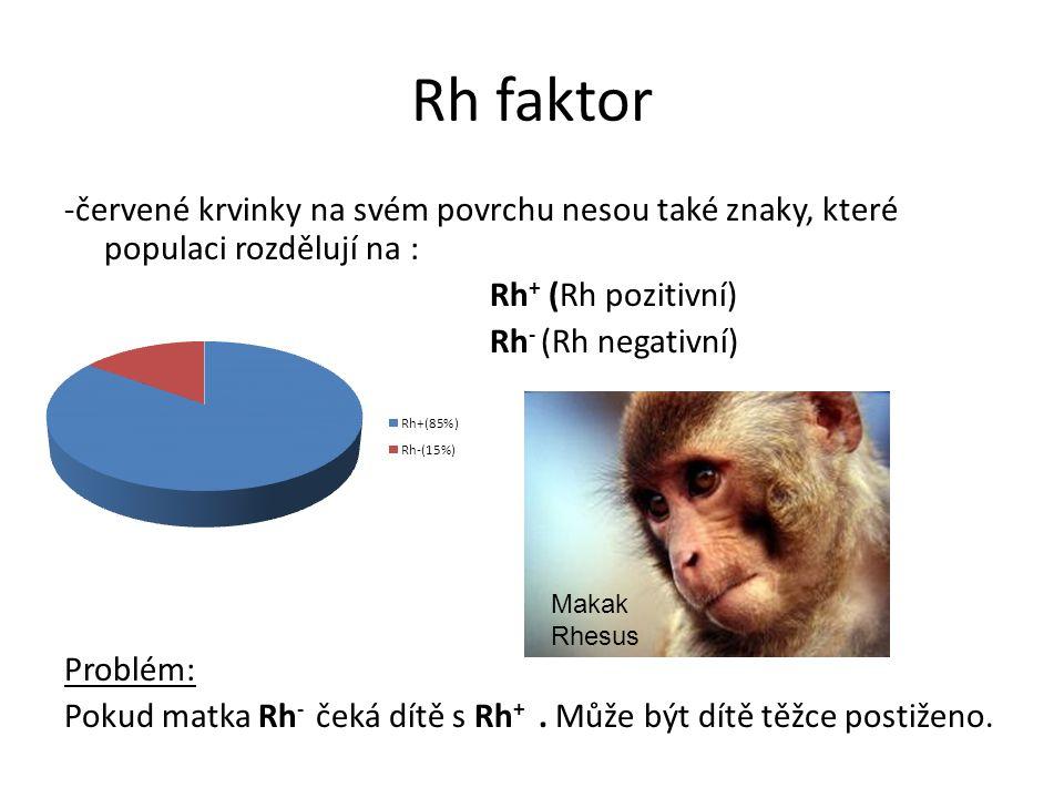 Rh faktor -červené krvinky na svém povrchu nesou také znaky, které populaci rozdělují na : Rh + (Rh pozitivní) Rh - (Rh negativní) Problém: Pokud matk
