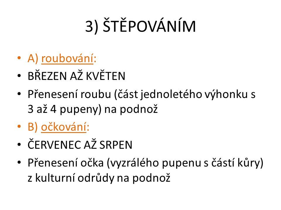3) ŠTĚPOVÁNÍM A) roubování: BŘEZEN AŽ KVĚTEN Přenesení roubu (část jednoletého výhonku s 3 až 4 pupeny) na podnož B) očkování: ČERVENEC AŽ SRPEN Přene