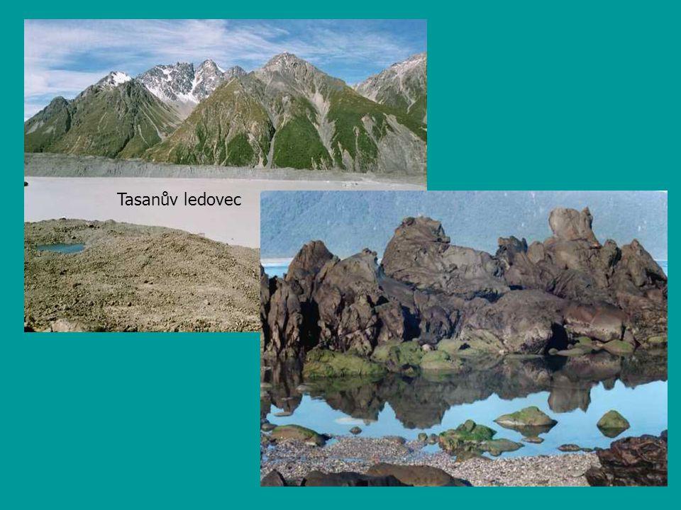 Tasanův ledovec