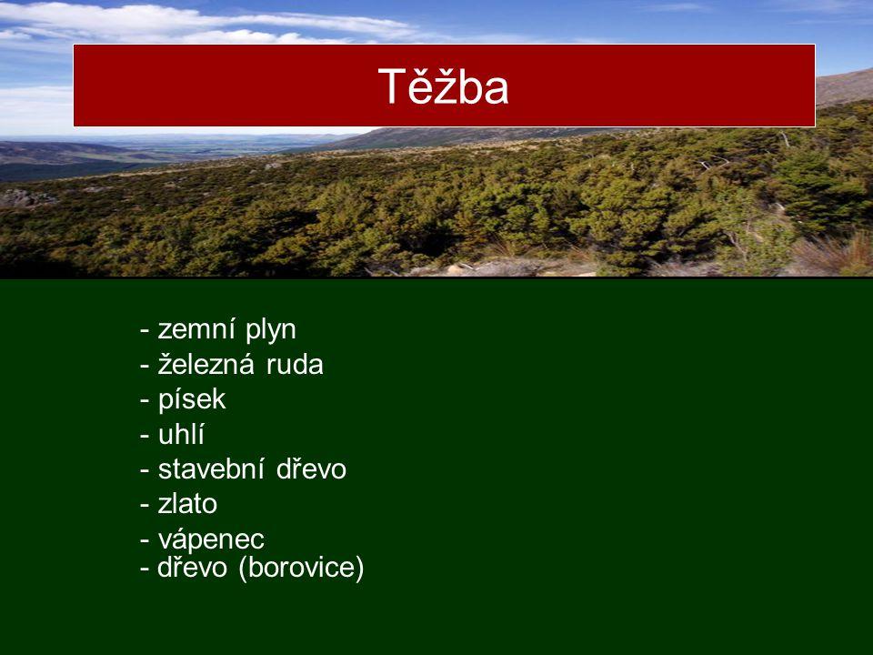Těžba - zemní plyn - železná ruda - písek - uhlí - stavební dřevo - zlato - vápenec - dřevo (borovice)
