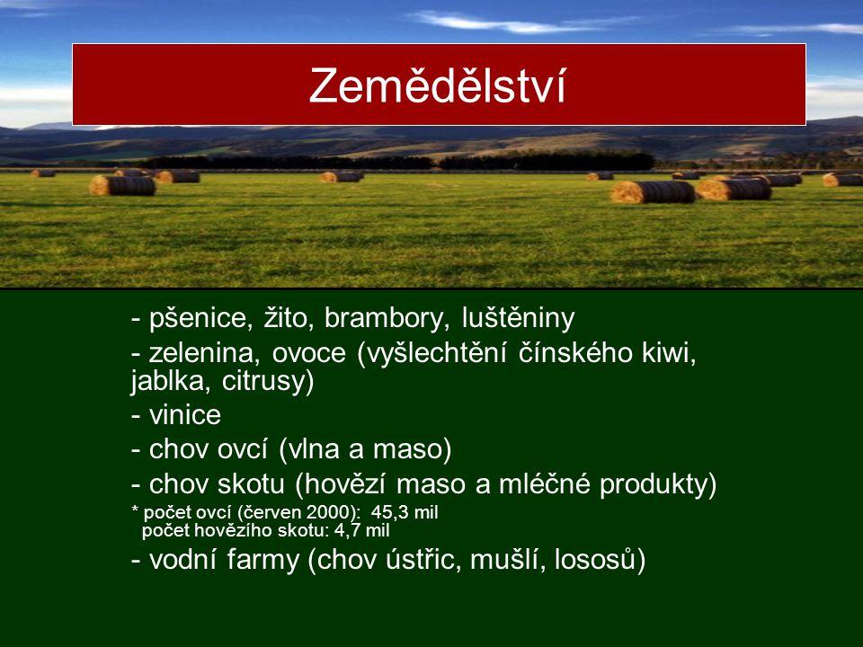 Zemědělství - pšenice, žito, brambory, luštěniny - zelenina, ovoce (vyšlechtění čínského kiwi, jablka, citrusy) - vinice - chov ovcí (vlna a maso) - chov skotu (hovězí maso a mléčné produkty) * počet ovcí (červen 2000): 45,3 mil počet hovězího skotu: 4,7 mil - vodní farmy (chov ústřic, mušlí, lososů)