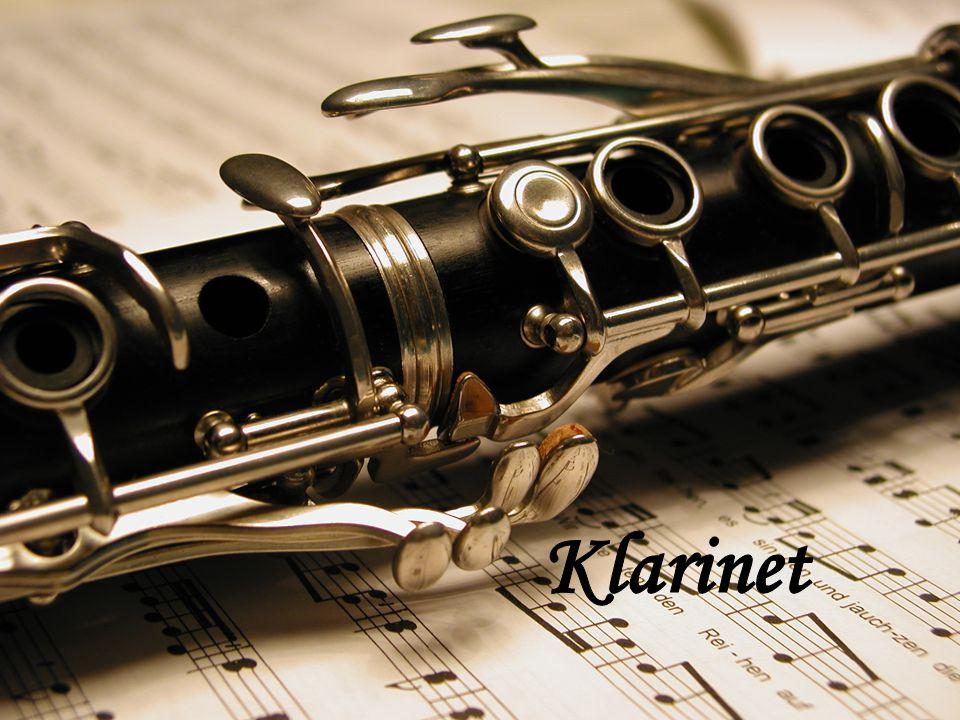 Klarinet je dechový dřevěný nástroj.Hraje se na něj pomocí plátku.