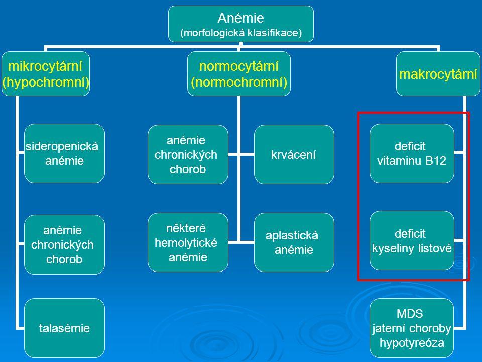Anémie (morfologická klasifikace) mikrocytární (hypochromní) sideropenická anémie chronických chorob talasémie normocytární (normochromní) anémie chro