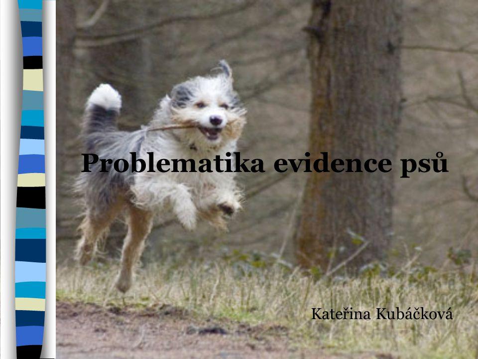 Problematika evidence psů Kateřina Kubáčková