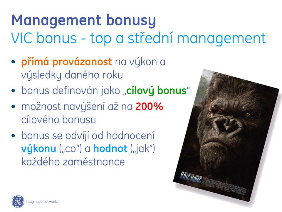 """Management bonusy VIC bonus - top a střední management přímá provázanost na výkon a výsledky daného roku bonus definován jako """"cílový bonus"""" možnost n"""
