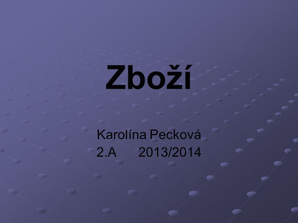 Zboží Karolína Pecková 2.A 2013/2014