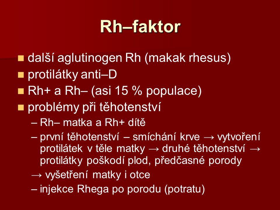 Rh–faktor další aglutinogen Rh (makak rhesus) protilátky anti–D Rh+ a Rh– (asi 15 % populace) problémy při těhotenství –Rh– matka a Rh+ dítě –první tě