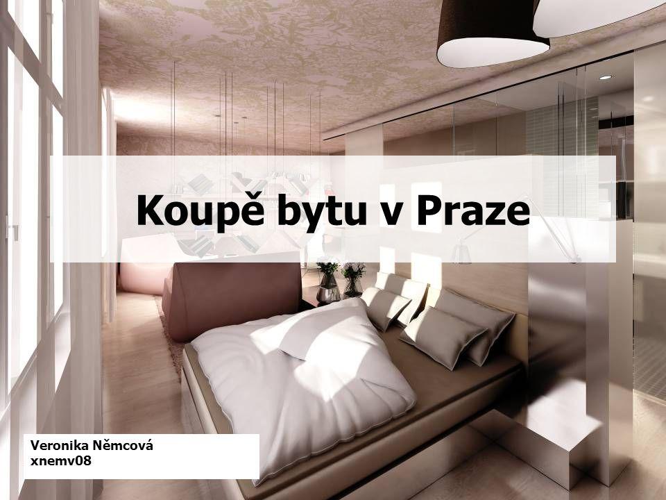 Veronika Němcová xnemv08 Koupě bytu v Praze