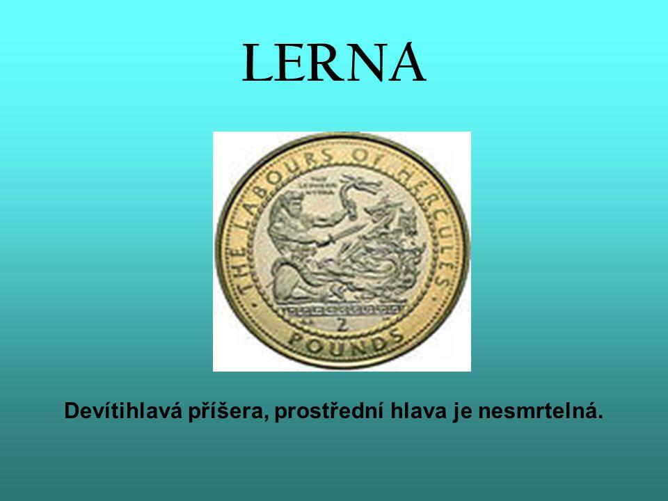 LERNA Devítihlavá příšera, prostřední hlava je nesmrtelná.