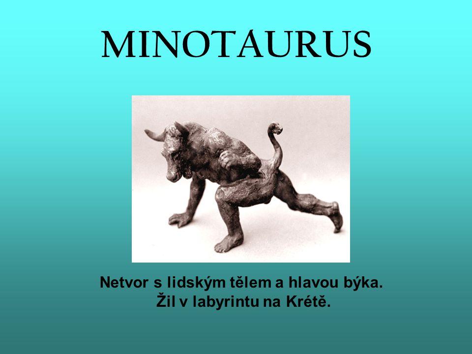 MINOTAURUS Netvor s lidským tělem a hlavou býka. Žil v labyrintu na Krétě.
