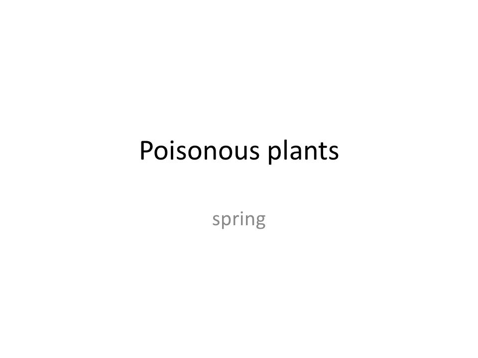 Poisonous plants spring