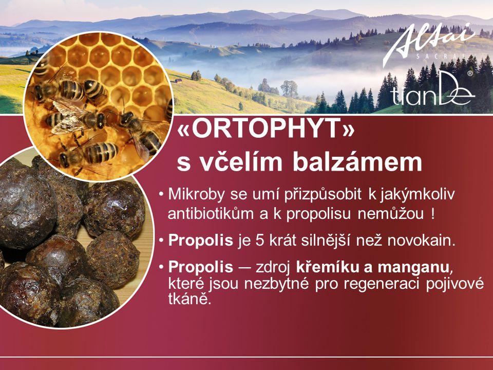 vanillylový éter dimethylsulfon extrakt rozmarýnu extrakt propolis olivový olej eukalyptový olej olej máty peprné extrakt jedlového jehličí Nový « ORTOFIT » — 4 staré + 4 nové : 8.
