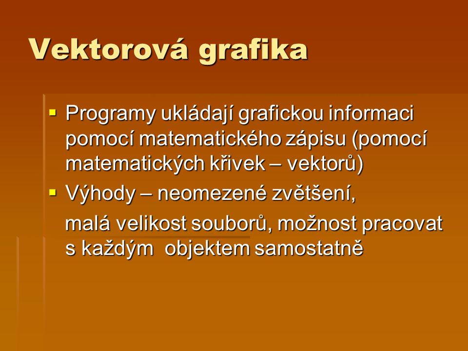 Vektorová grafika  Programy ukládají grafickou informaci pomocí matematického zápisu (pomocí matematických křivek – vektorů)  Výhody – neomezené zvě