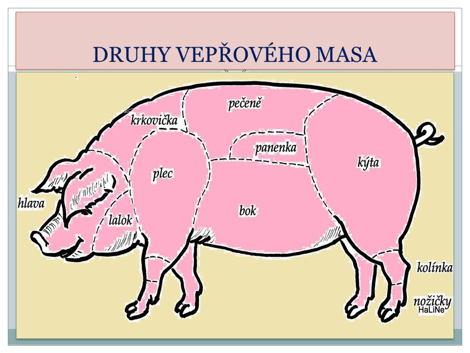 Hovězí maso /od krav a býků/ Je tmavší než vepřové, má méně tuku Druhy masa – hovězí přední, kližka, svíčková, roštěná, plec Úprava masa – dušení, pečení, vaření, minutky aj.