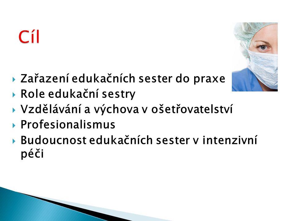  Zařazení edukačních sester do praxe  Role edukační sestry  Vzdělávání a výchova v ošetřovatelství  Profesionalismus  Budoucnost edukačních sester v intenzivní péči