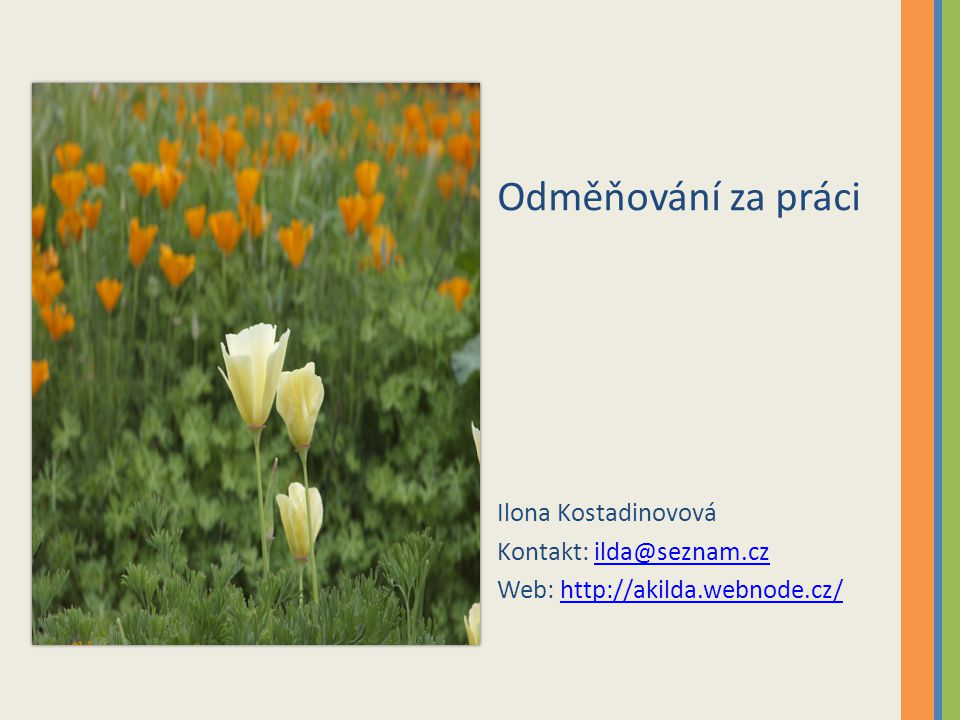 Odměňování za práci Ilona Kostadinovová Kontakt: ilda@seznam.czilda@seznam.cz Web: http://akilda.webnode.cz/http://akilda.webnode.cz/