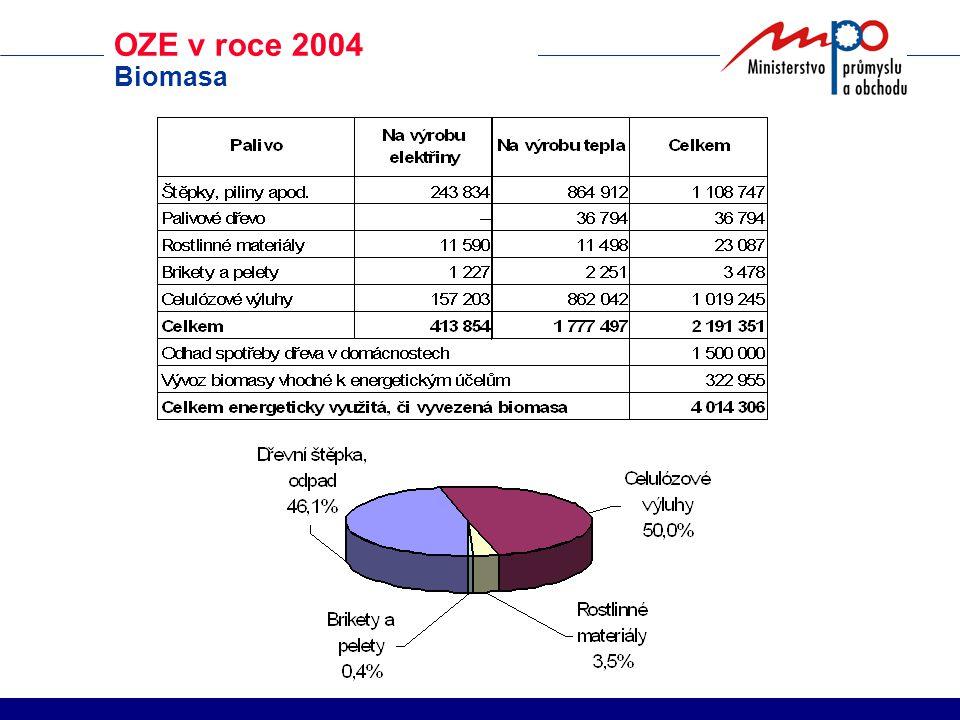 OZE v roce 2004 Biomasa