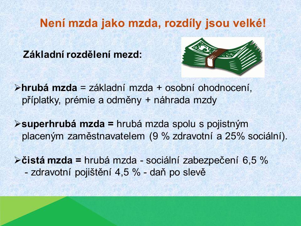 Není mzda jako mzda, rozdíly jsou velké.