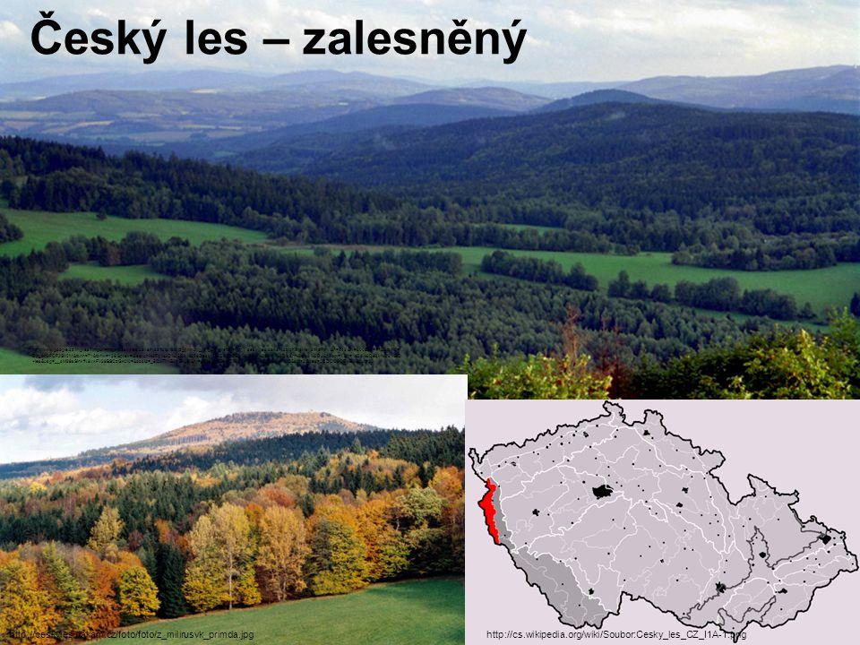 Český les – zalesněný http://cs.wikipedia.org/wiki/Soubor:Cesky_les_CZ_I1A-1.png http://www.google.cz/imgres?imgurl=http://ceskyles.dakam.cz/foto/foto