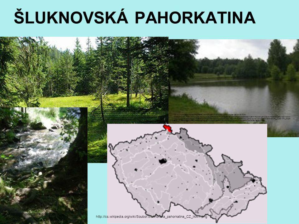 ŠLUKNOVSKÁ PAHORKATINA http://cs.wikipedia.org/wiki/Soubor:Sluknovska_pahorkatina_CZ_I4A-1.png http://www.google.cz/imgres?imgurl=http://dolnipoustevn