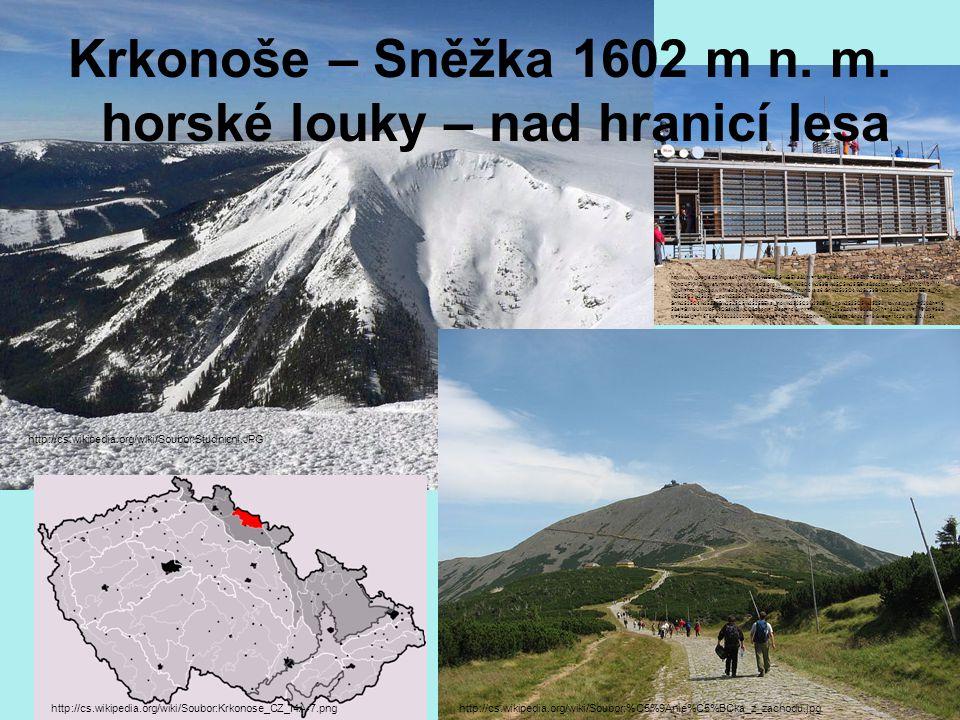 Krkonoše – Sněžka 1602 m n. m. horské louky – nad hranicí lesa http://cs.wikipedia.org/wiki/Soubor:Krkonose_CZ_I4A-7.png http://cs.wikipedia.org/wiki/