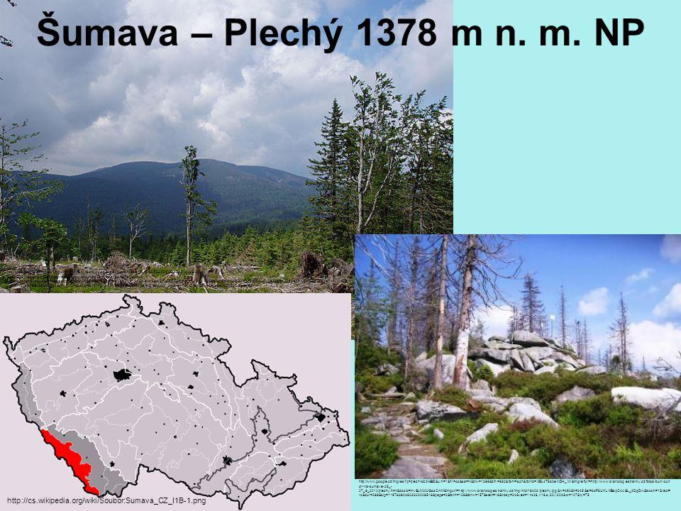 Šumava – Plechý 1378 m n. m. NP http://cs.wikipedia.org/wiki/Soubor:Sumava_CZ_I1B-1.png http://www.google.cz/imgres?imgurl=http://www.tisicovky.cz/exp