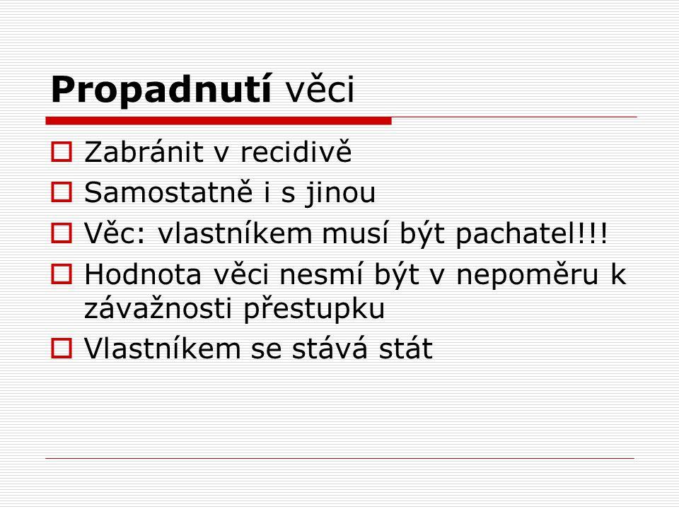 Zákaz pobytu  Max 3 měsíce  Nelze u mladistvého!!.