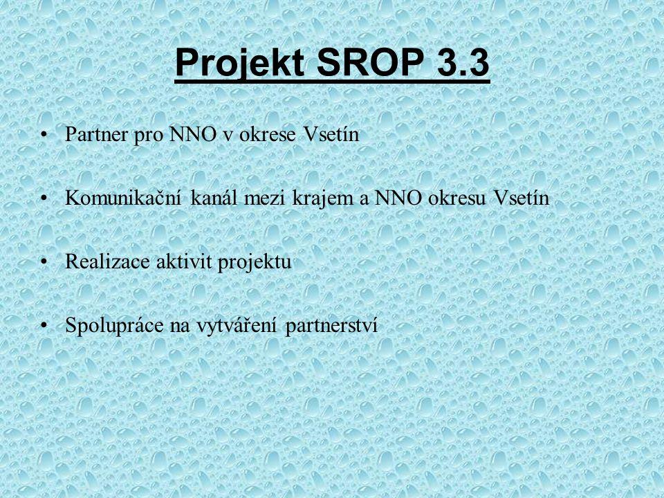 Projekt SROP 3.3 Partner pro NNO v okrese Vsetín Komunikační kanál mezi krajem a NNO okresu Vsetín Realizace aktivit projektu Spolupráce na vytváření partnerství