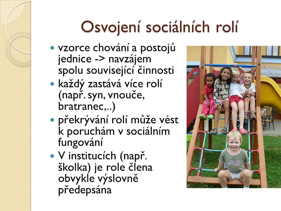 Osvojení sociálních rolí vzorce chování a postojů jednice -> navzájem spolu související činnosti každý zastává více rolí (např.