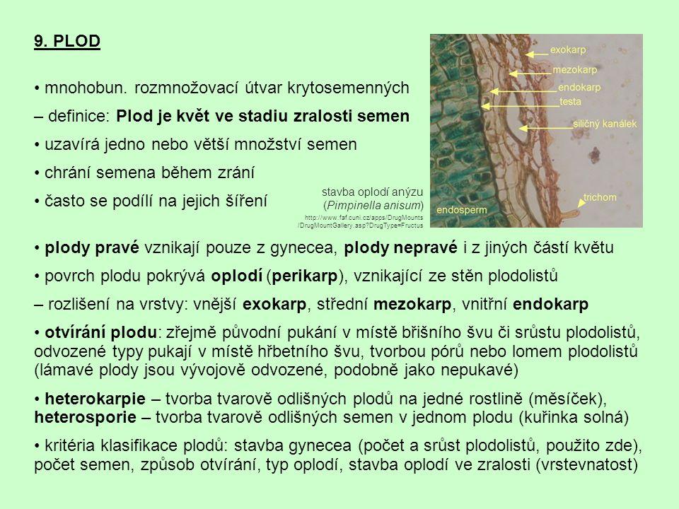 9. PLOD mnohobun. rozmnožovací útvar krytosemenných – definice: Plod je květ ve stadiu zralosti semen uzavírá jedno nebo větší množství semen chrání s