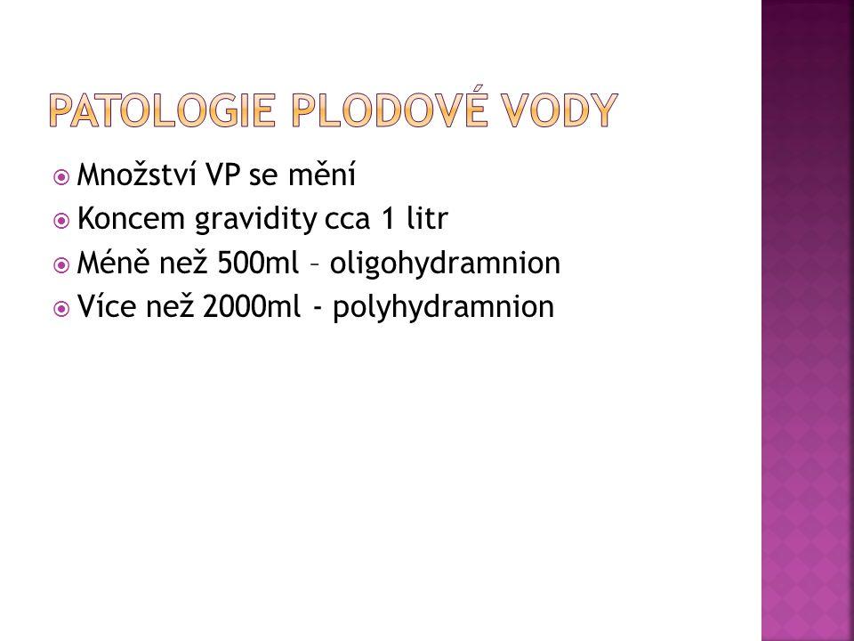  Množství VP se mění  Koncem gravidity cca 1 litr  Méně než 500ml – oligohydramnion  Více než 2000ml - polyhydramnion