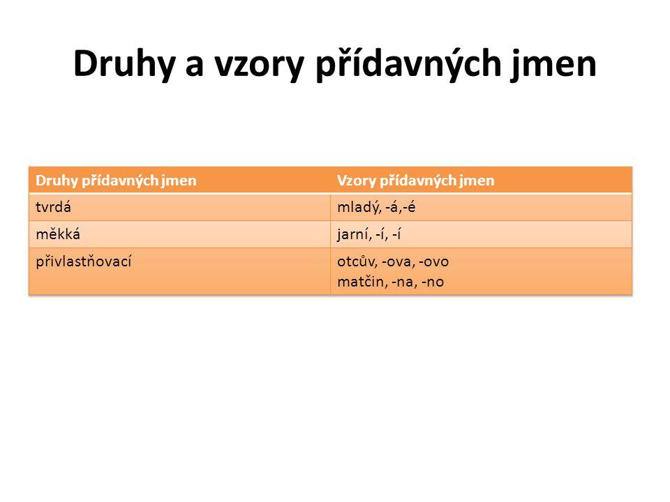 Druhy a vzory přídavných jmen