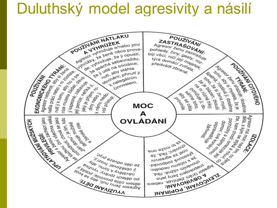 Duluthský model agresivity a násilí