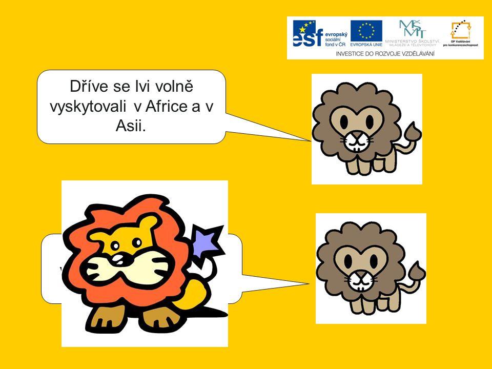 Dříve se lvi volně vyskytovali v Africe a v Asii. Dříve se lvi volně vyskytovali v Africe a v Americe.
