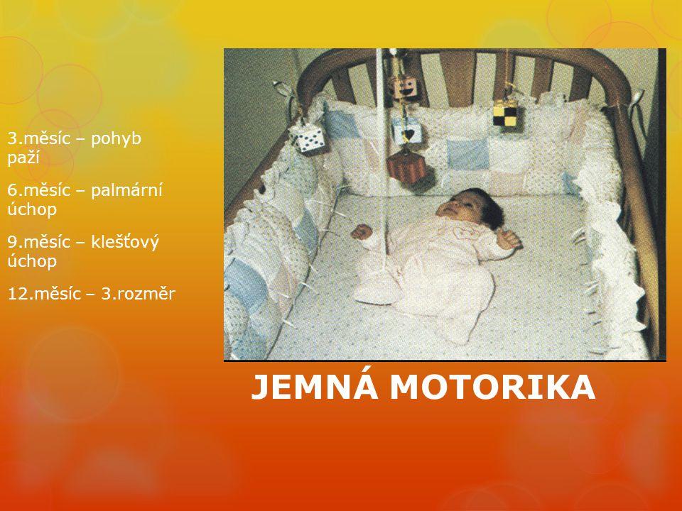 3.měsíc – pohyb paží 6.měsíc – palmární úchop 9.měsíc – klešťový úchop 12.měsíc – 3.rozměr JEMNÁ MOTORIKA