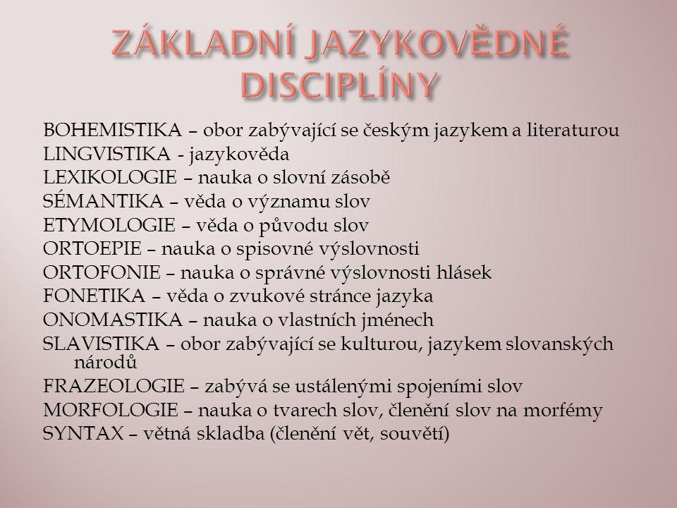 BOHEMISTIKA – obor zabývající se českým jazykem a literaturou LINGVISTIKA - jazykověda LEXIKOLOGIE – nauka o slovní zásobě SÉMANTIKA – věda o významu