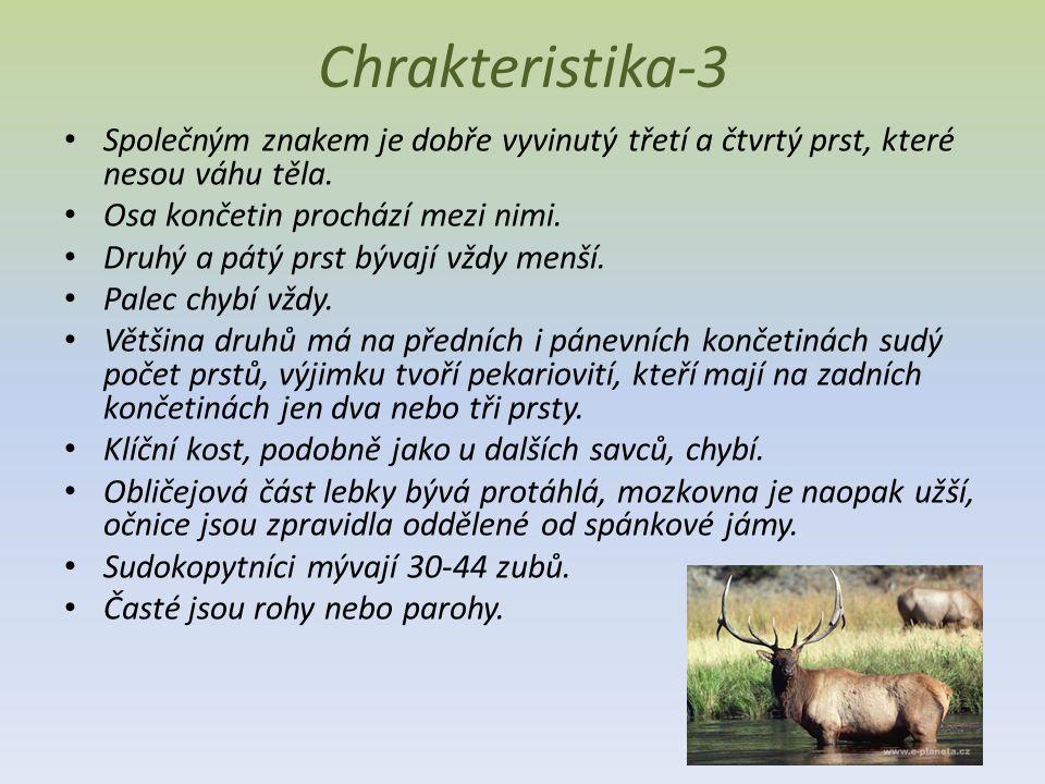 Chrakteristika-3 Společným znakem je dobře vyvinutý třetí a čtvrtý prst, které nesou váhu těla.
