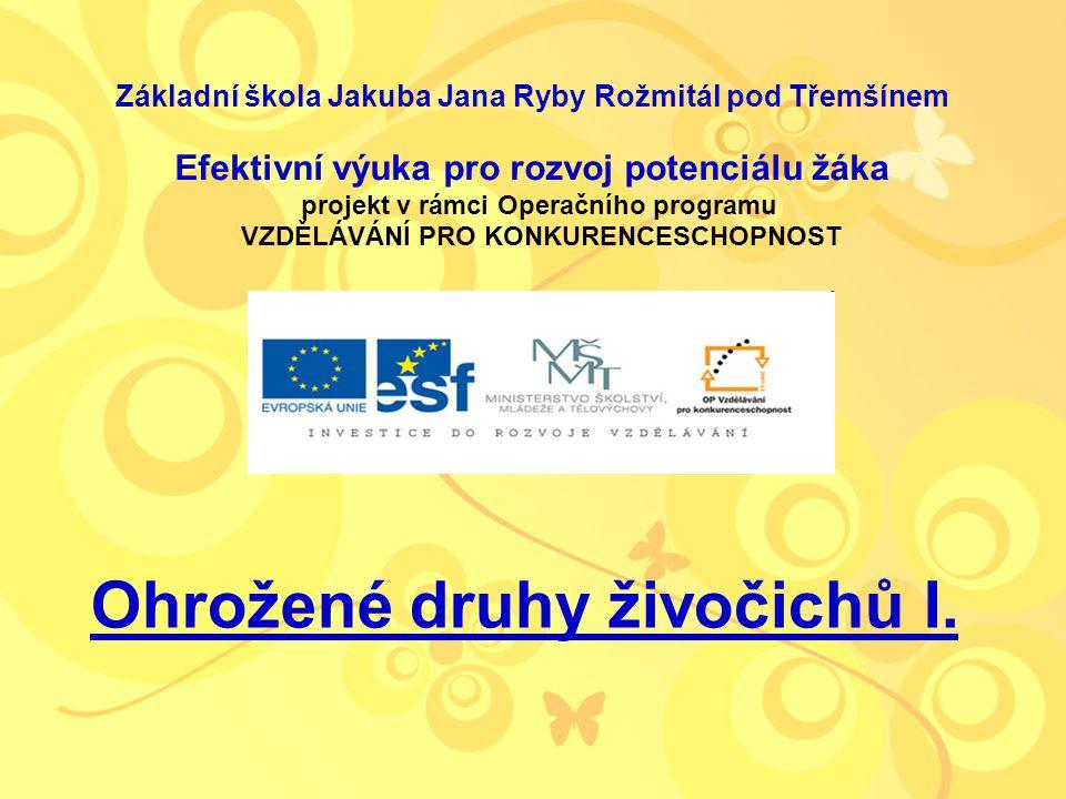 Téma: Ohrožené druhy živočichů I.– 3. – 5. ročník Použitý software: držitel licence - ZŠ J.