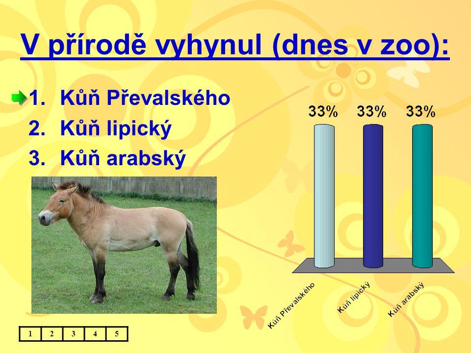 V přírodě vyhynul (dnes v zoo): 1.Kůň Převalského 2.Kůň lipický 3.Kůň arabský 12345