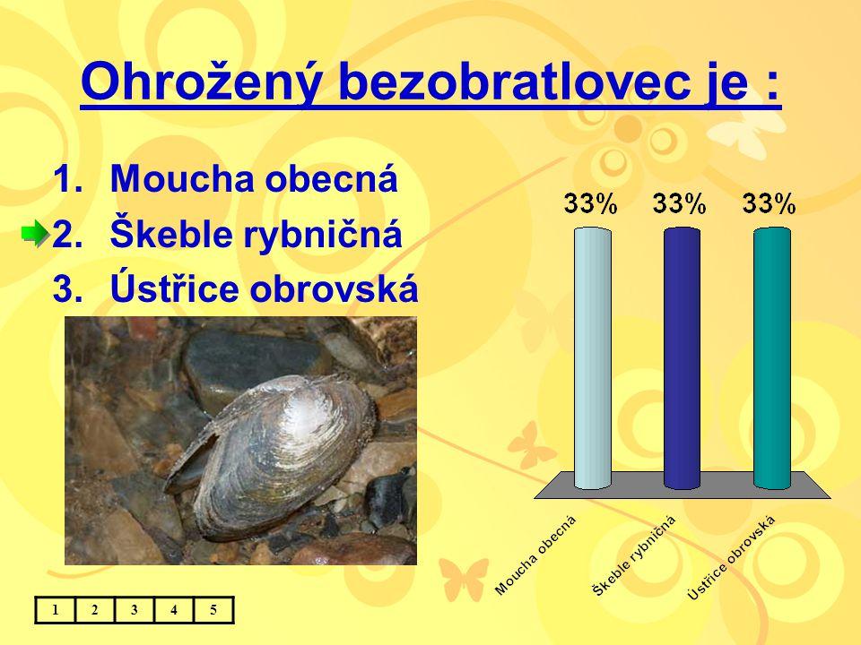 Ohrožený bezobratlovec je : 1.Moucha obecná 2.Škeble rybničná 3.Ústřice obrovská 12345