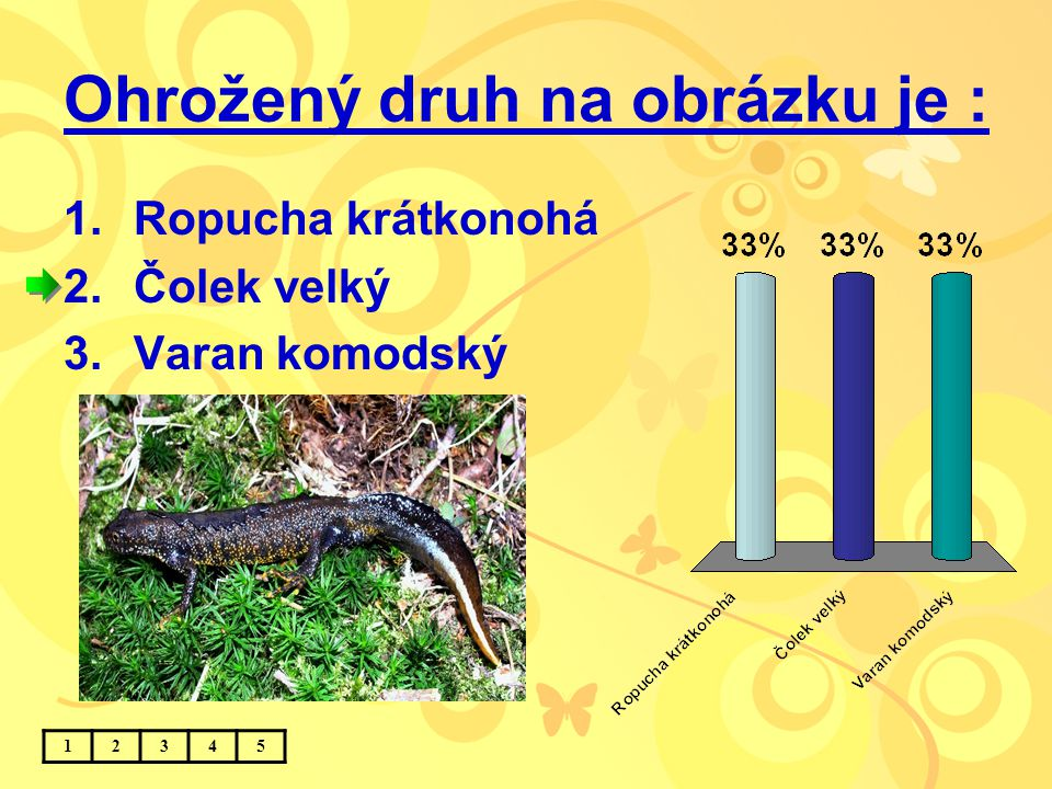 Ohrožený druh na obrázku je : 1.Ropucha krátkonohá 2.Čolek velký 3.Varan komodský 12345