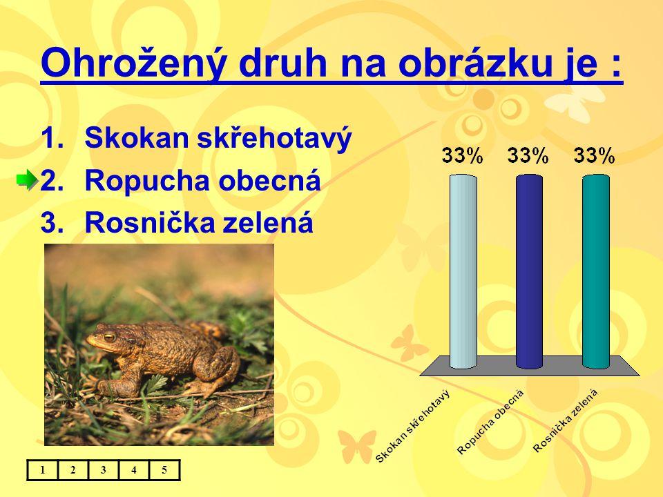 Ohrožený druh na obrázku je : 1.Skokan skřehotavý 2.Ropucha obecná 3.Rosnička zelená 12345