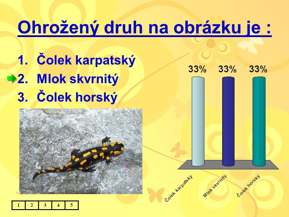 Ohrožený druh na obrázku je : 1.Čolek karpatský 2.Mlok skvrnitý 3.Čolek horský 12345
