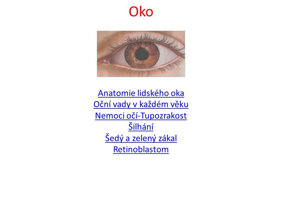 Oko Anatomie lidského oka Oční vady v každém věku Nemoci očí-Tupozrakost Šilhání Šedý a zelený zákal Retinoblastom
