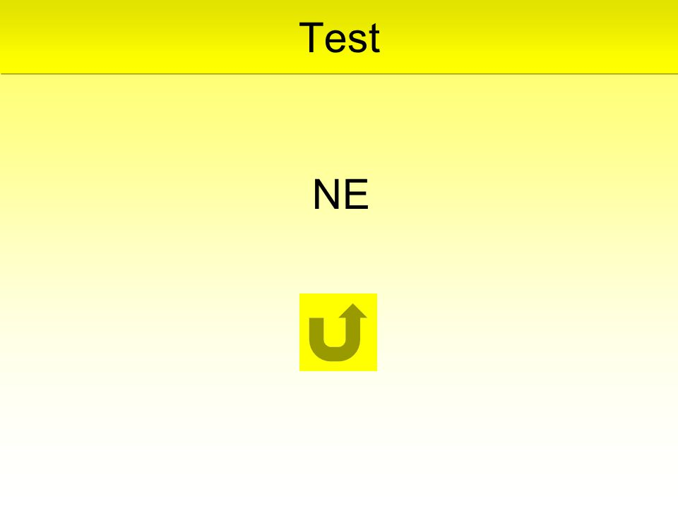 NE Test