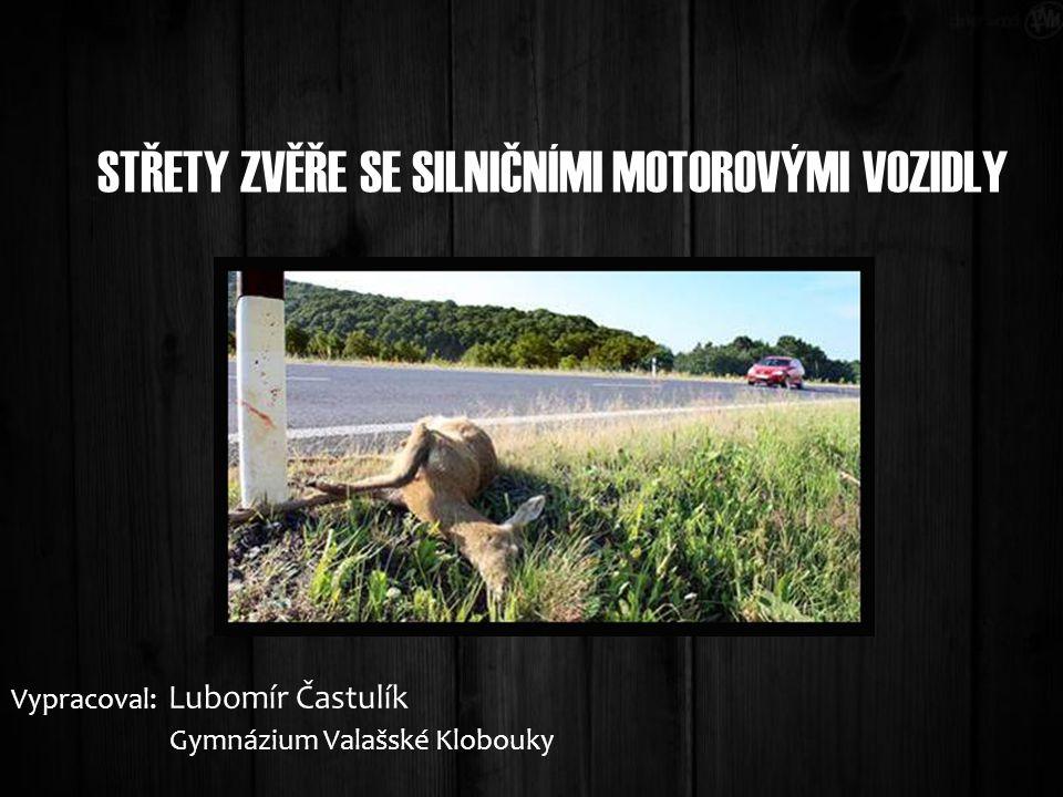 STŘETY ZVĚŘE SE SILNIČNÍMI MOTOROVÝMI VOZIDLY Vypracoval: Lubomír Častulík Gymnázium Valašské Klobouky