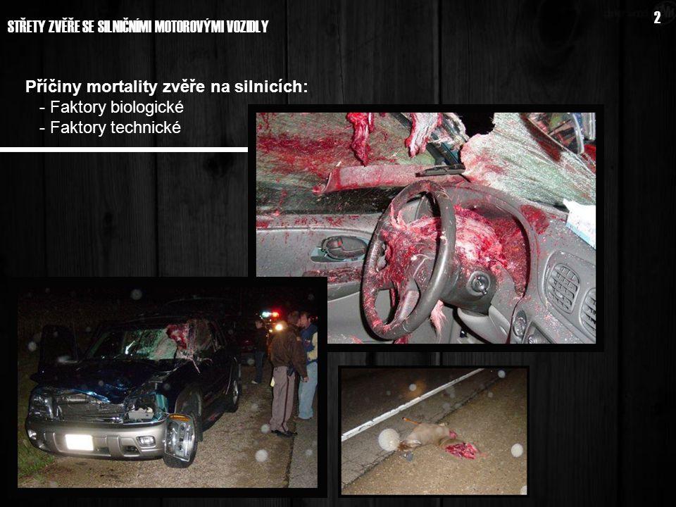 Příčiny mortality zvěře na silnicích: - Faktory biologické - Faktory technické 2 STŘETY ZVĚŘE SE SILNIČNÍMI MOTOROVÝMI VOZIDLY