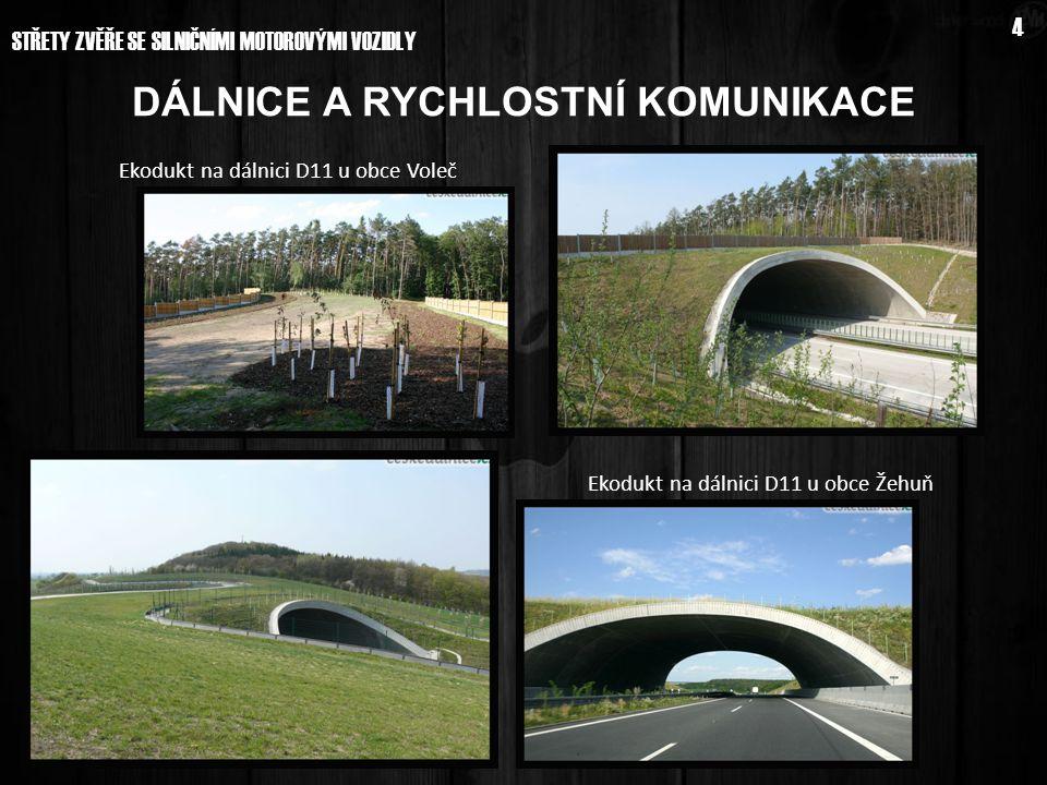 STŘETY ZVĚŘE SE SILNIČNÍMI MOTOROVÝMI VOZIDLY 4 Ekodukt na dálnici D11 u obce Voleč Ekodukt na dálnici D11 u obce Žehuň DÁLNICE A RYCHLOSTNÍ KOMUNIKAC